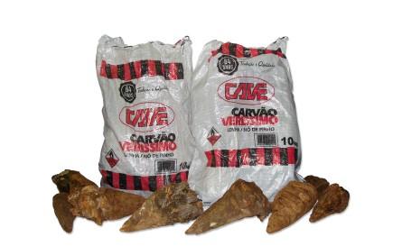 Pacotes de carvão para churrasco